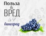 Все, что нужно знать о виноград: полезные и кому противопоказан
